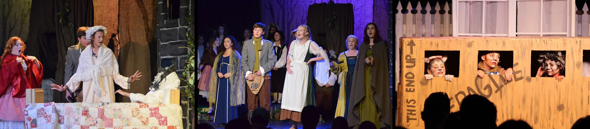 McLaughlin Theatre Company: musicals Loomis theatrical workshops